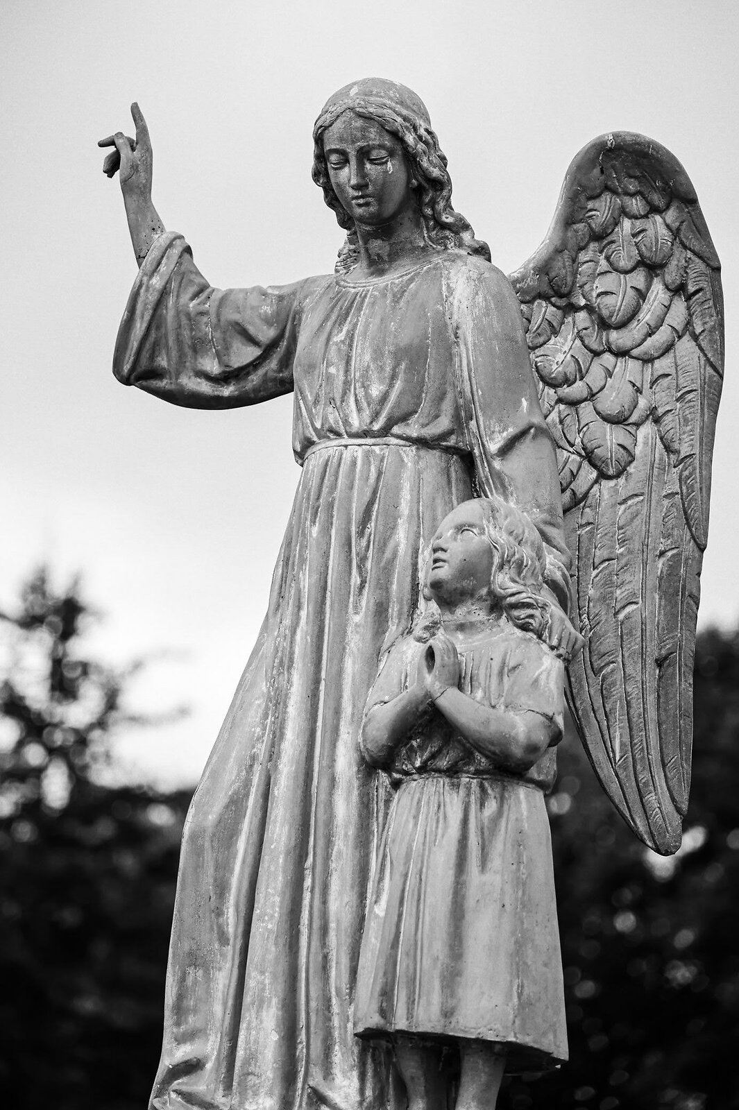 08-02-2020_cemetery_NZ6_6598_tmax400.jpg