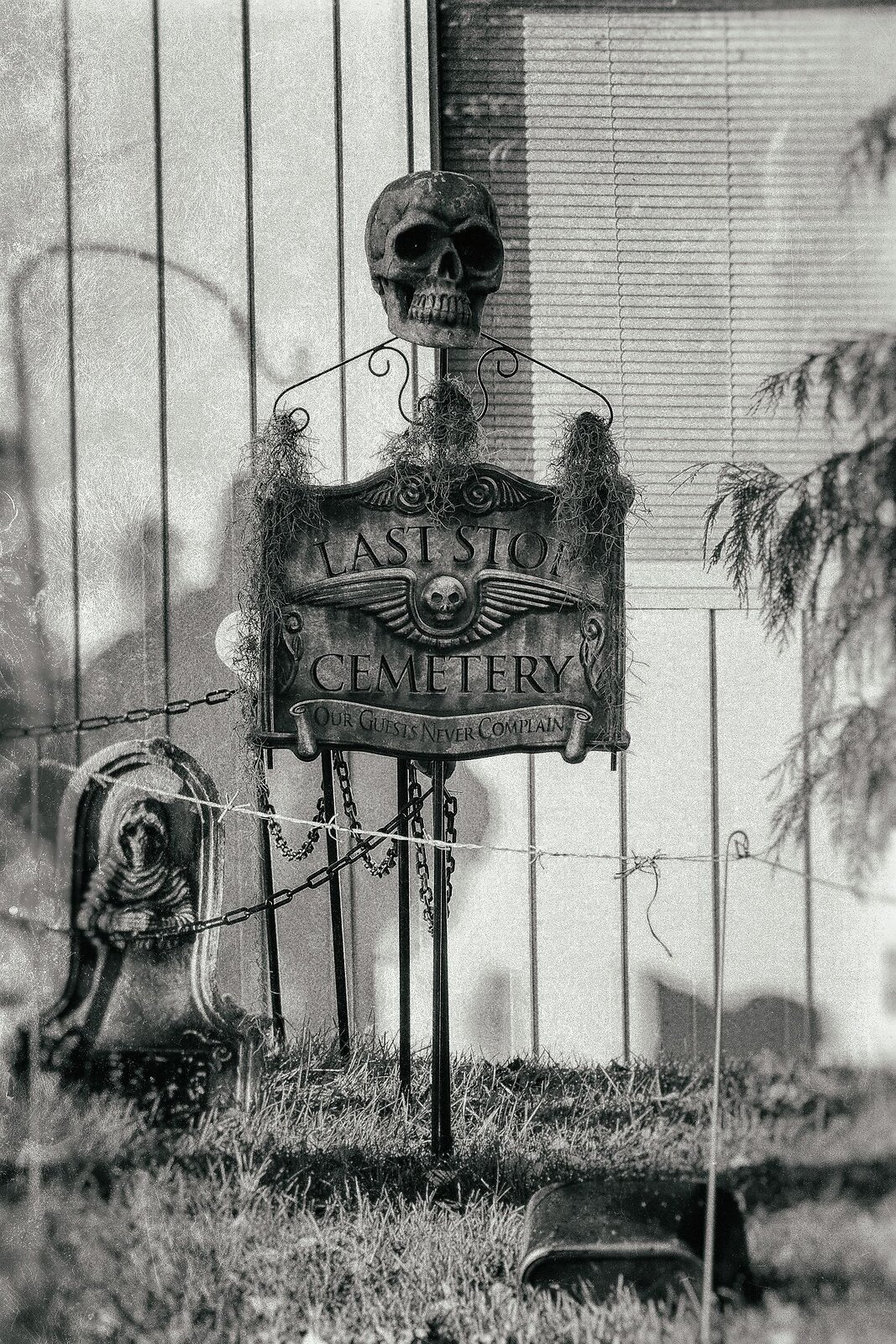 10-13-2020_noebixby_halloween_XT030637_dxo_tmax3200_analogefex_wetplate4.JPG