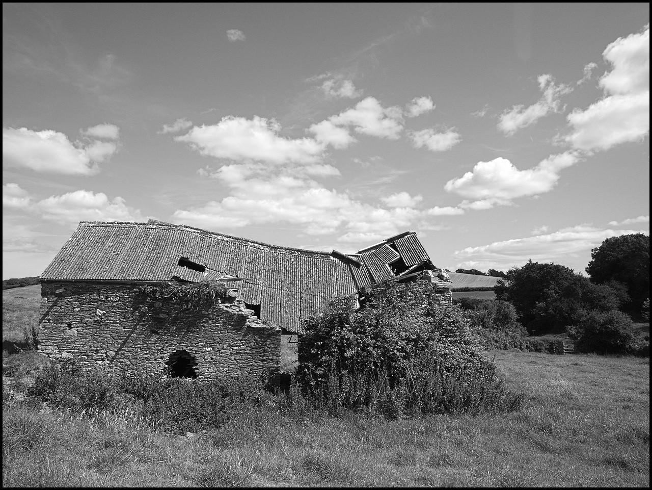 190714-1020333.jpg