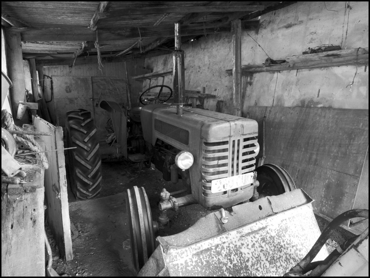 190728-1150287.jpg