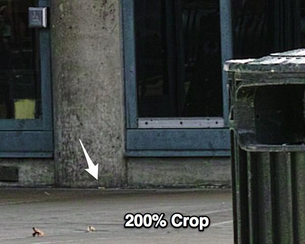 200crop.jpg