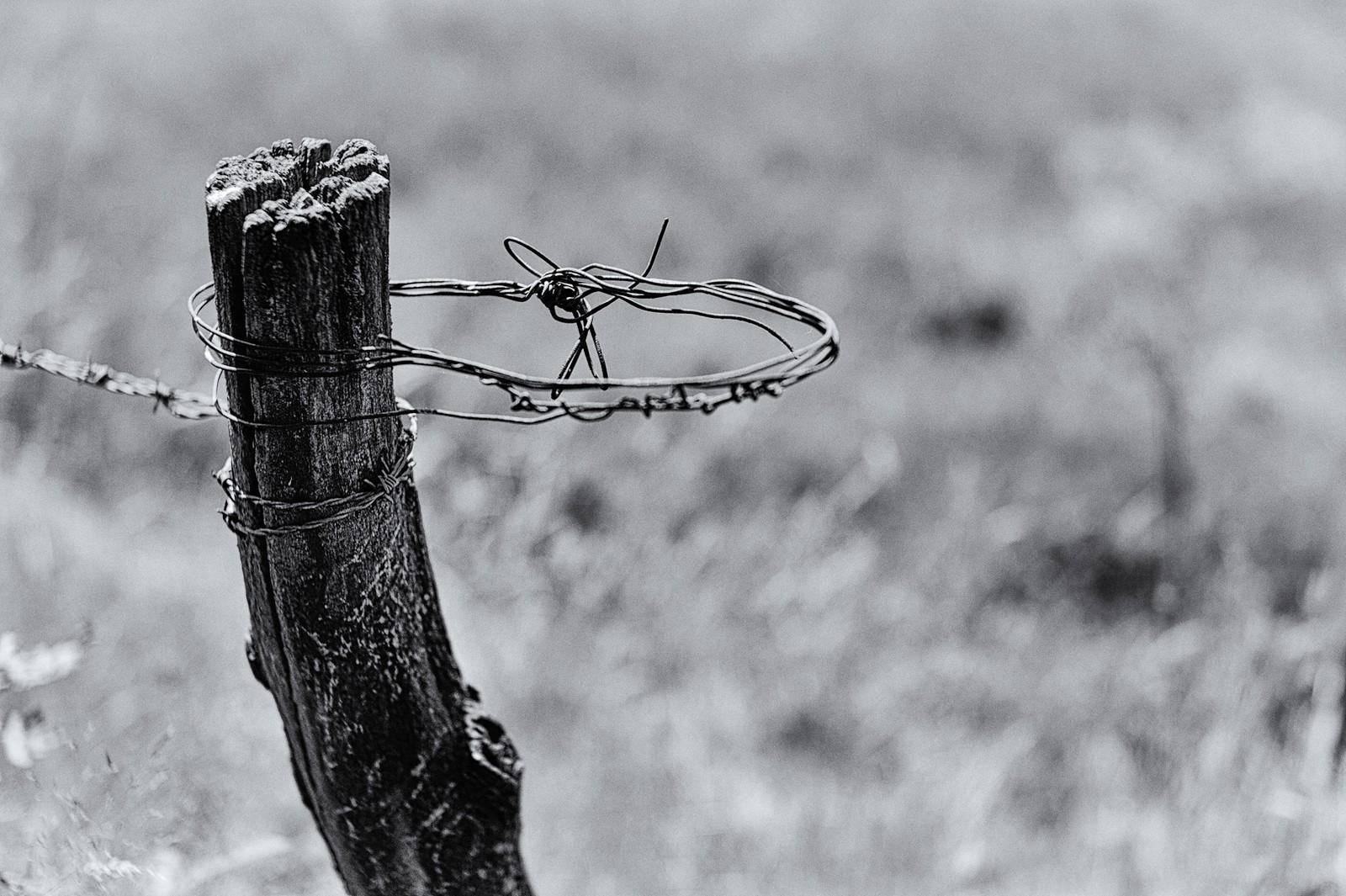 2012-Varia_2012-07-26_12-41-19_00810_DxO-Edit-X3.jpg