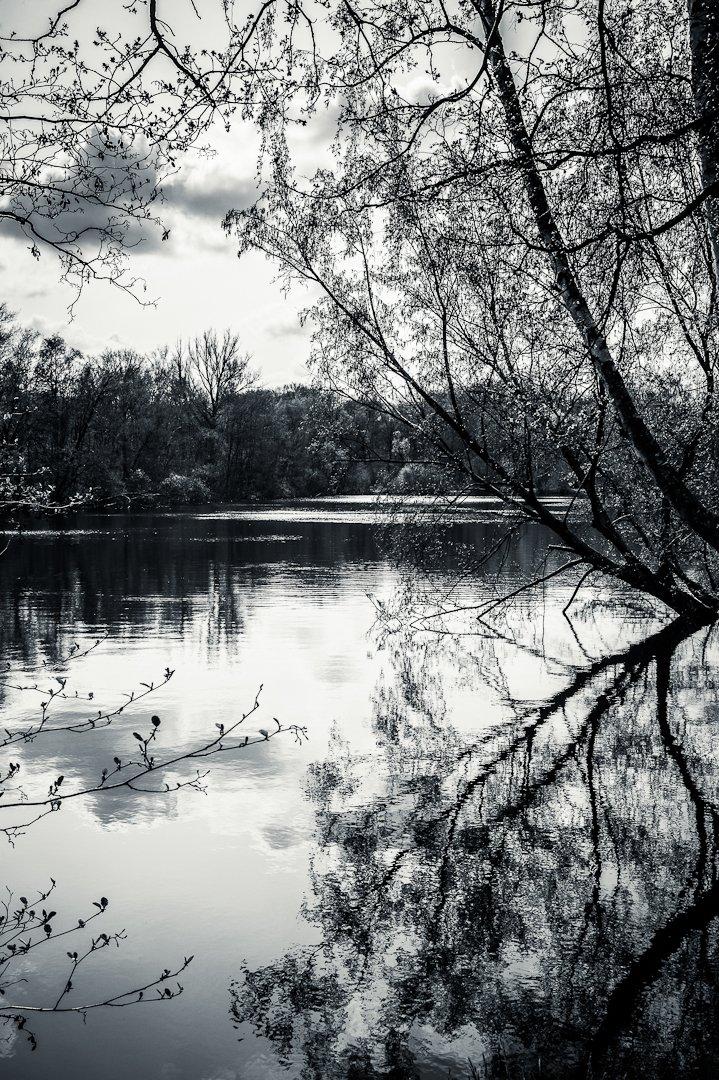 2012-Varia_Leica_2012-04-14_15-37-44_00259-2.jpg