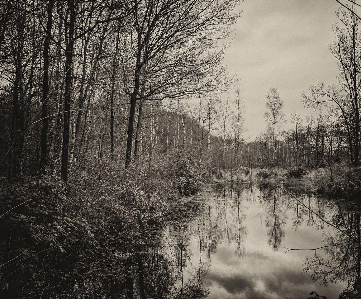 2012-Varia_Leica_2012-12-31_13-06-40_01886-Edit-X2.jpg