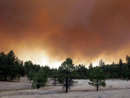 279438d1307681487-arizona-wallow-wildfire-arizona_wildfires_ap110606044102_540x405.jpg