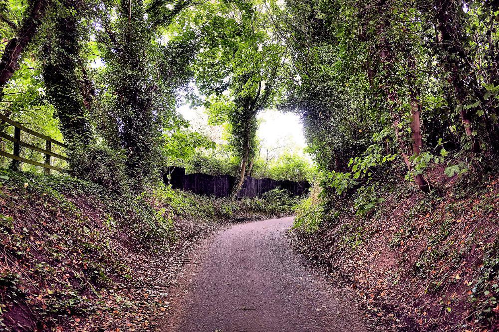 287_Wirral_Village_Lane_2.jpg