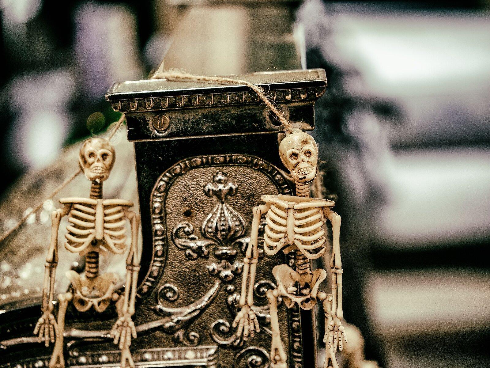 2Skeletons-AnalogEfex2.jpg