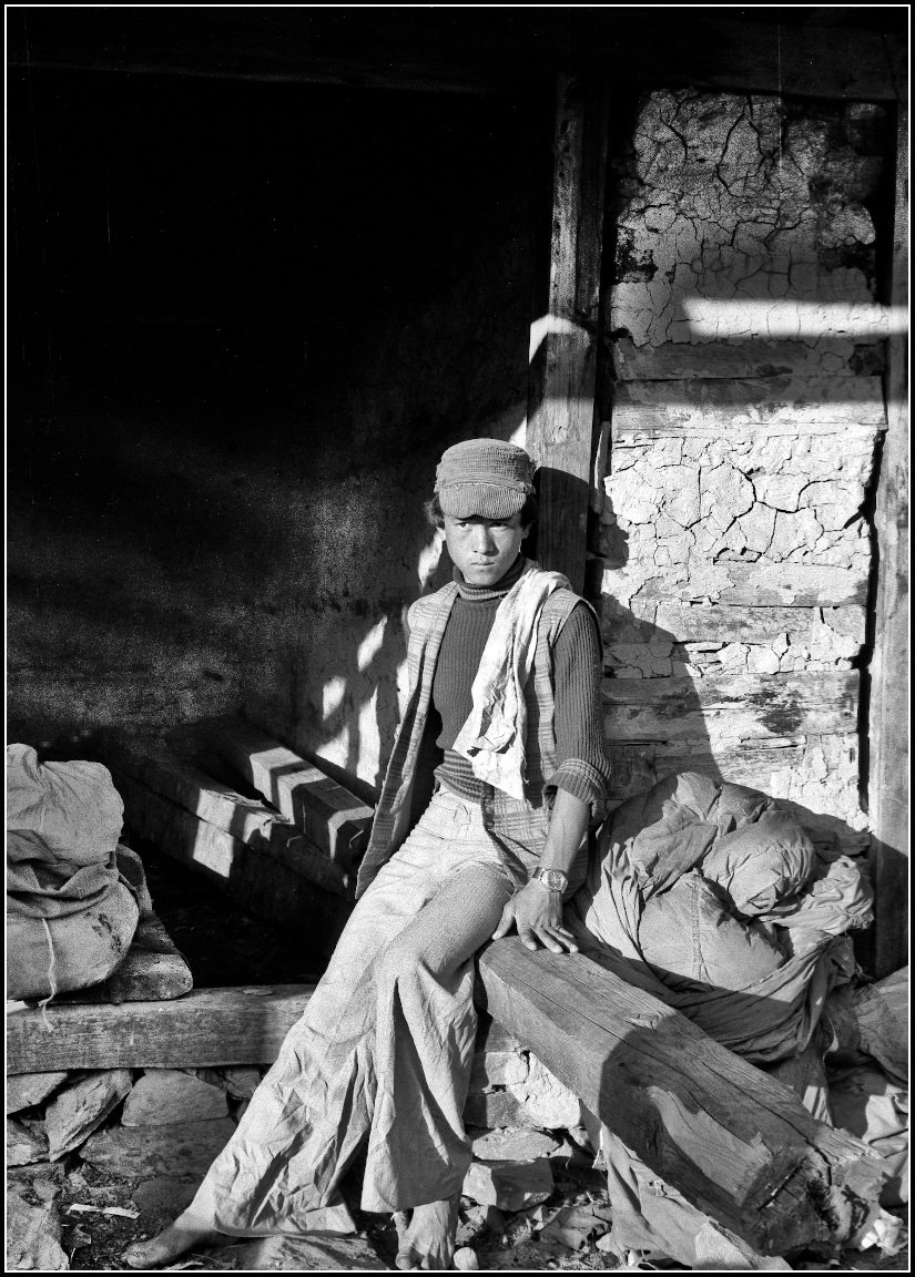 35-33-4-Assistant Cook-Himachel Pradesh-India.jpg