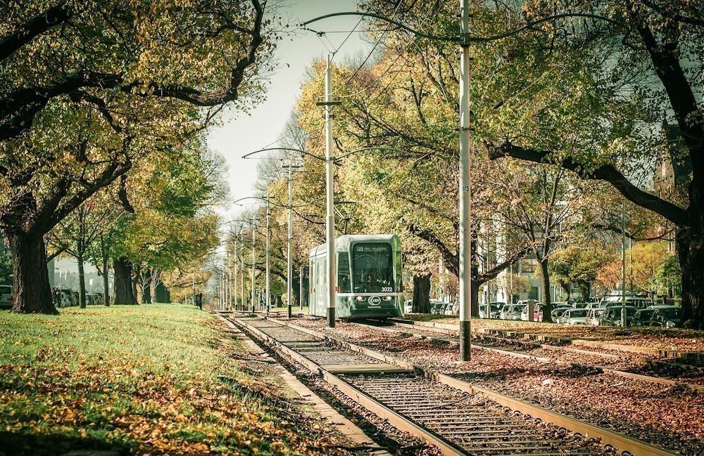 autumn_in_the_park-2.jpg