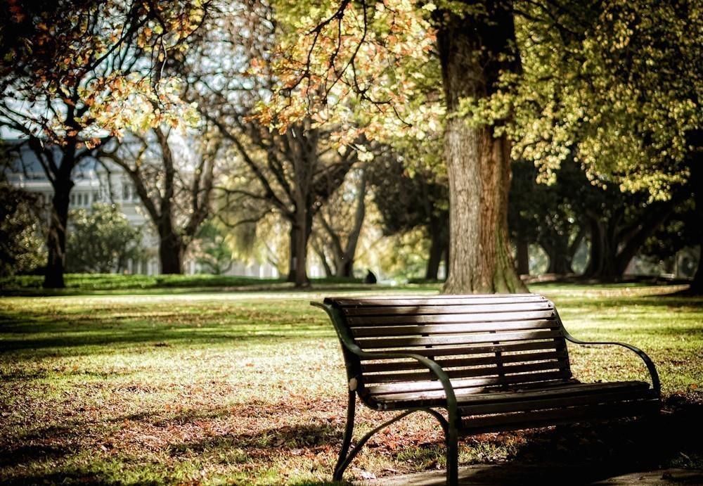 autumn_in_the_park.jpg