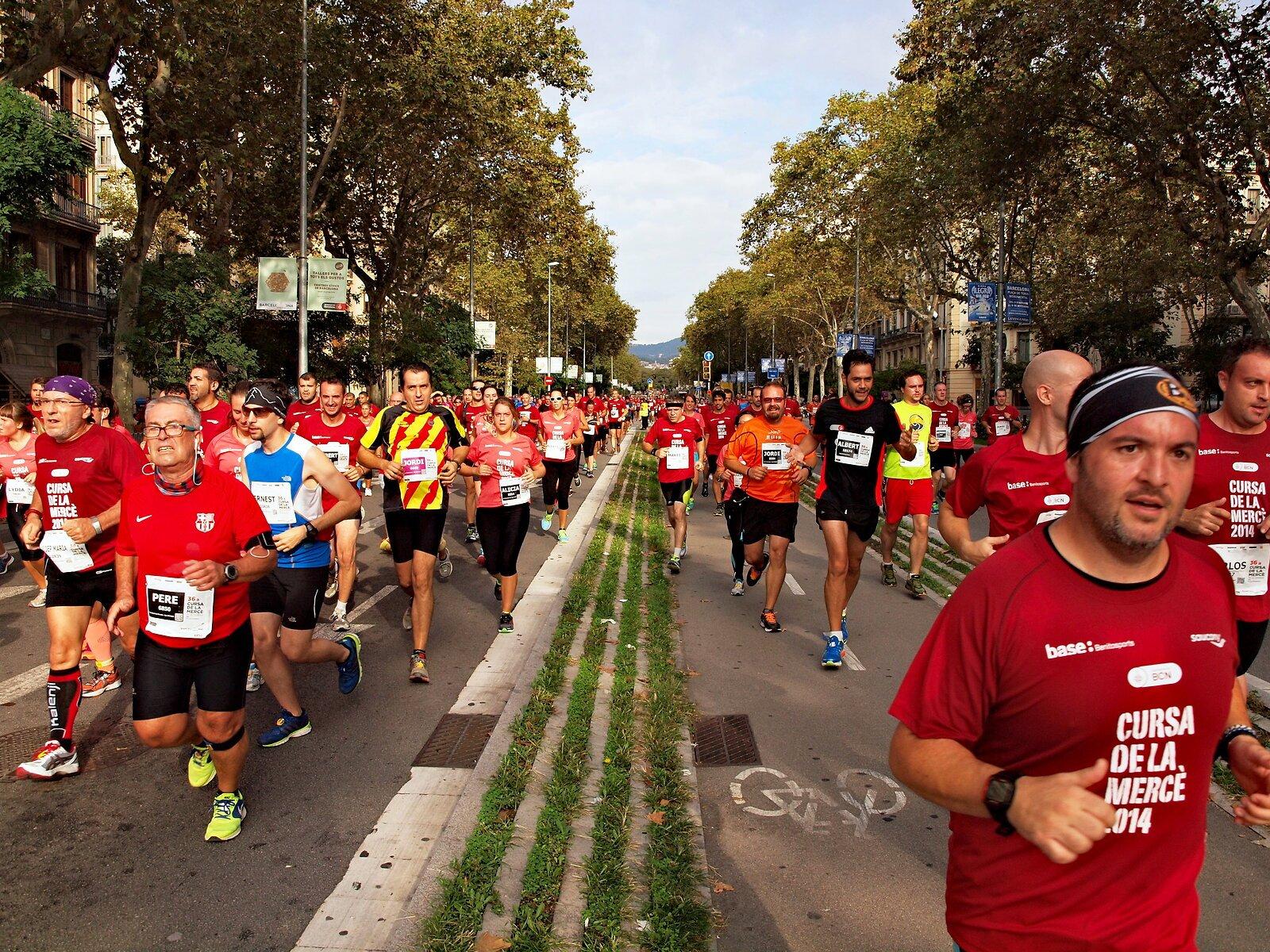 Barcelona_ marathon 2014.jpg