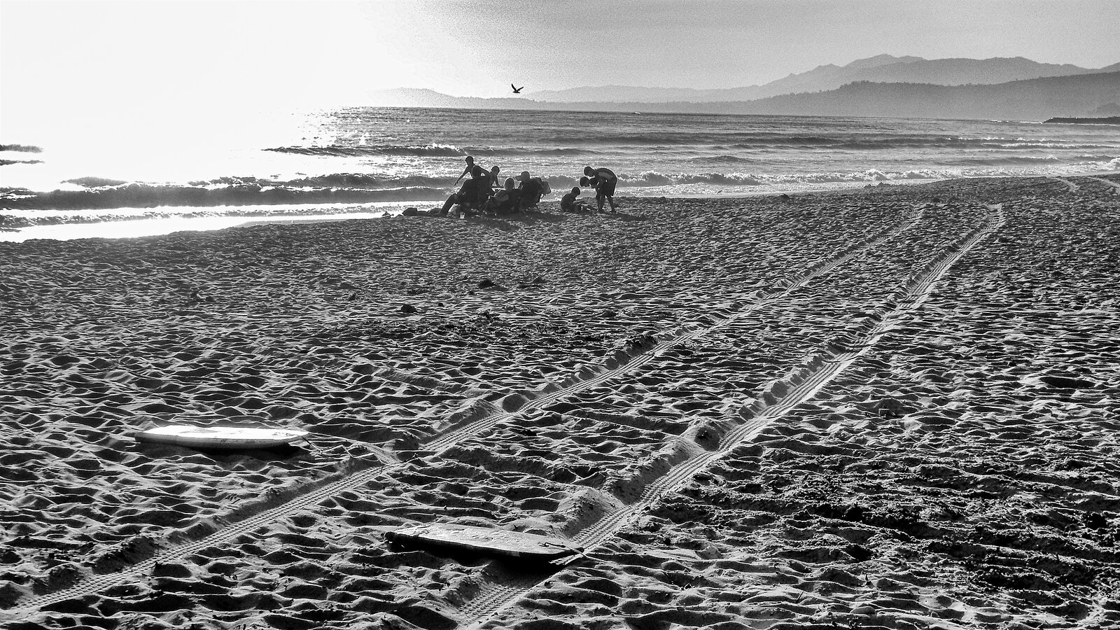 beach_tracks_Coolpix9700_June20_smaller.jpg