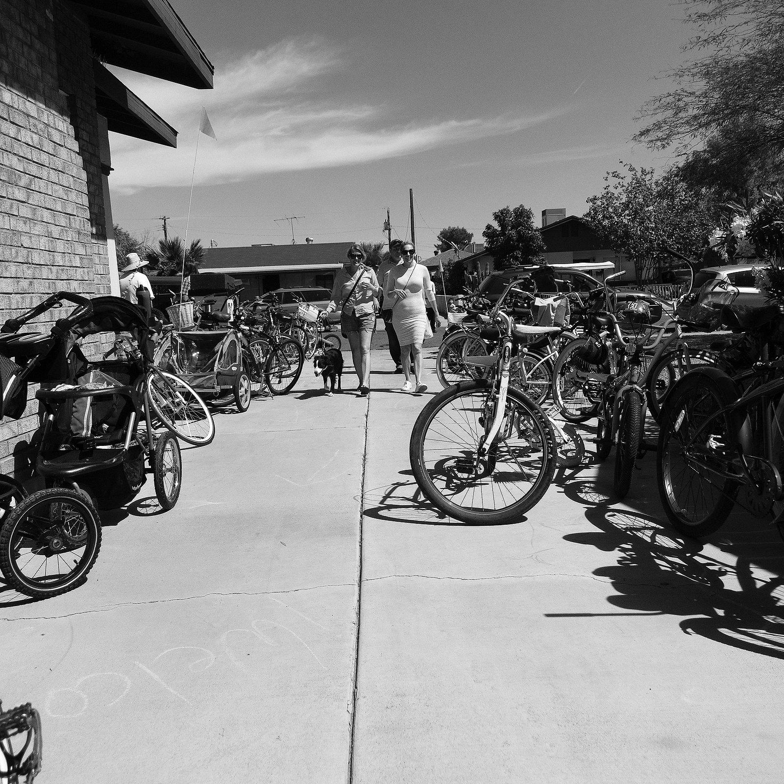 BicyclesDogs.jpg