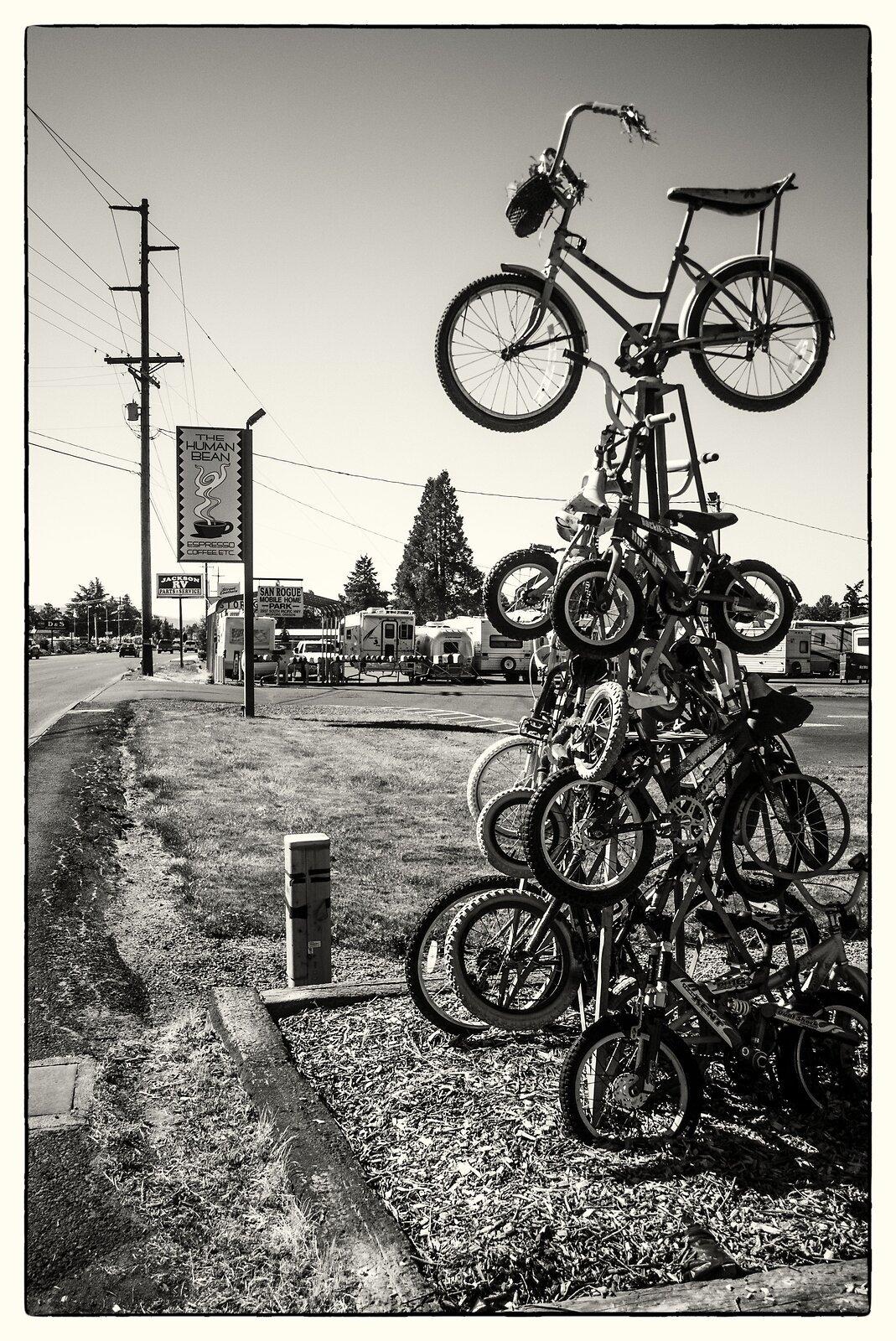 BicycleTree-Acros.jpg