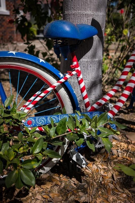 Bike Close-up.jpg