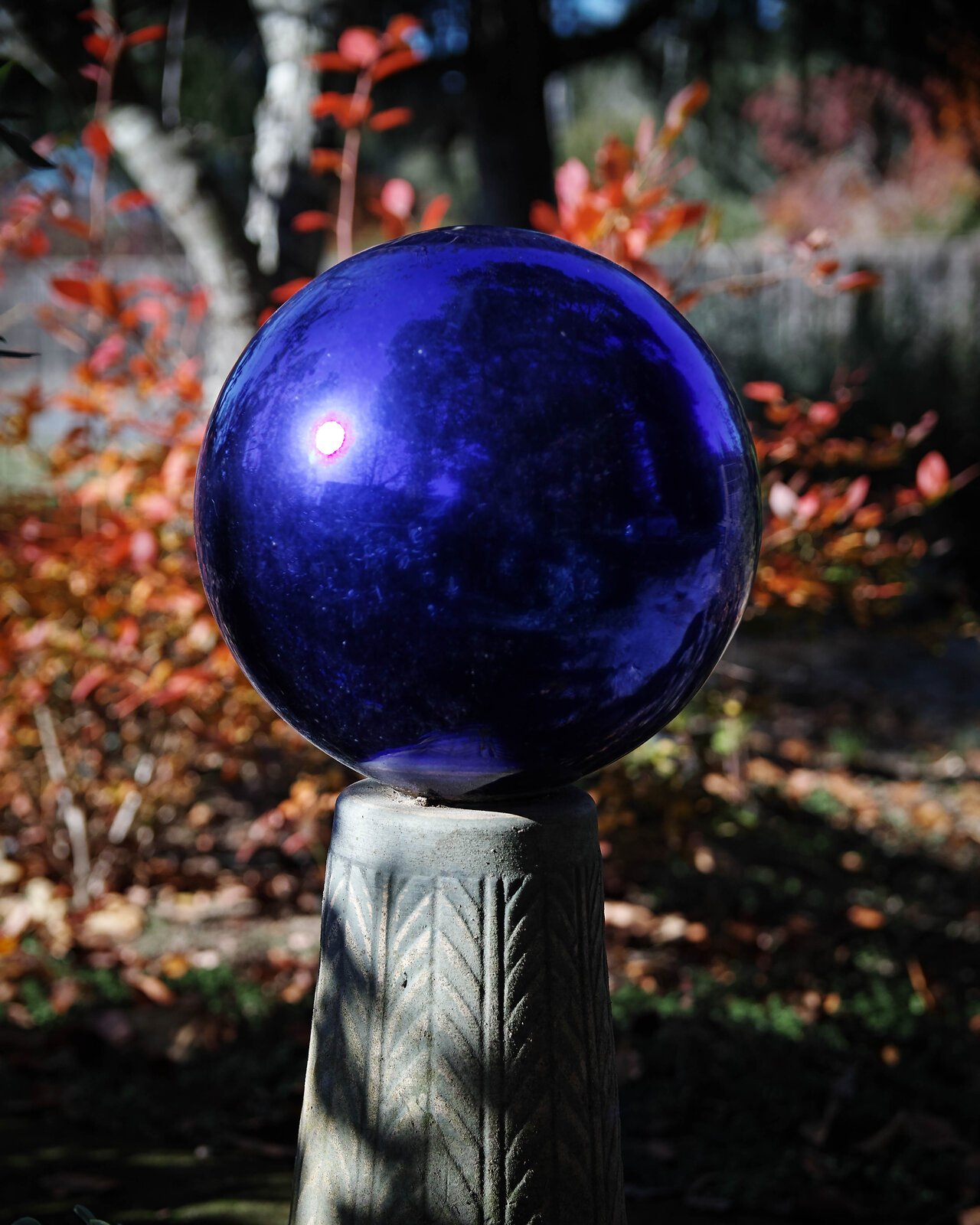 blue_ball_SDQH_17to50_Dec20_3.jpg