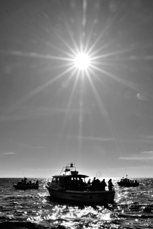 boats.sunburst.bw.web.jpg