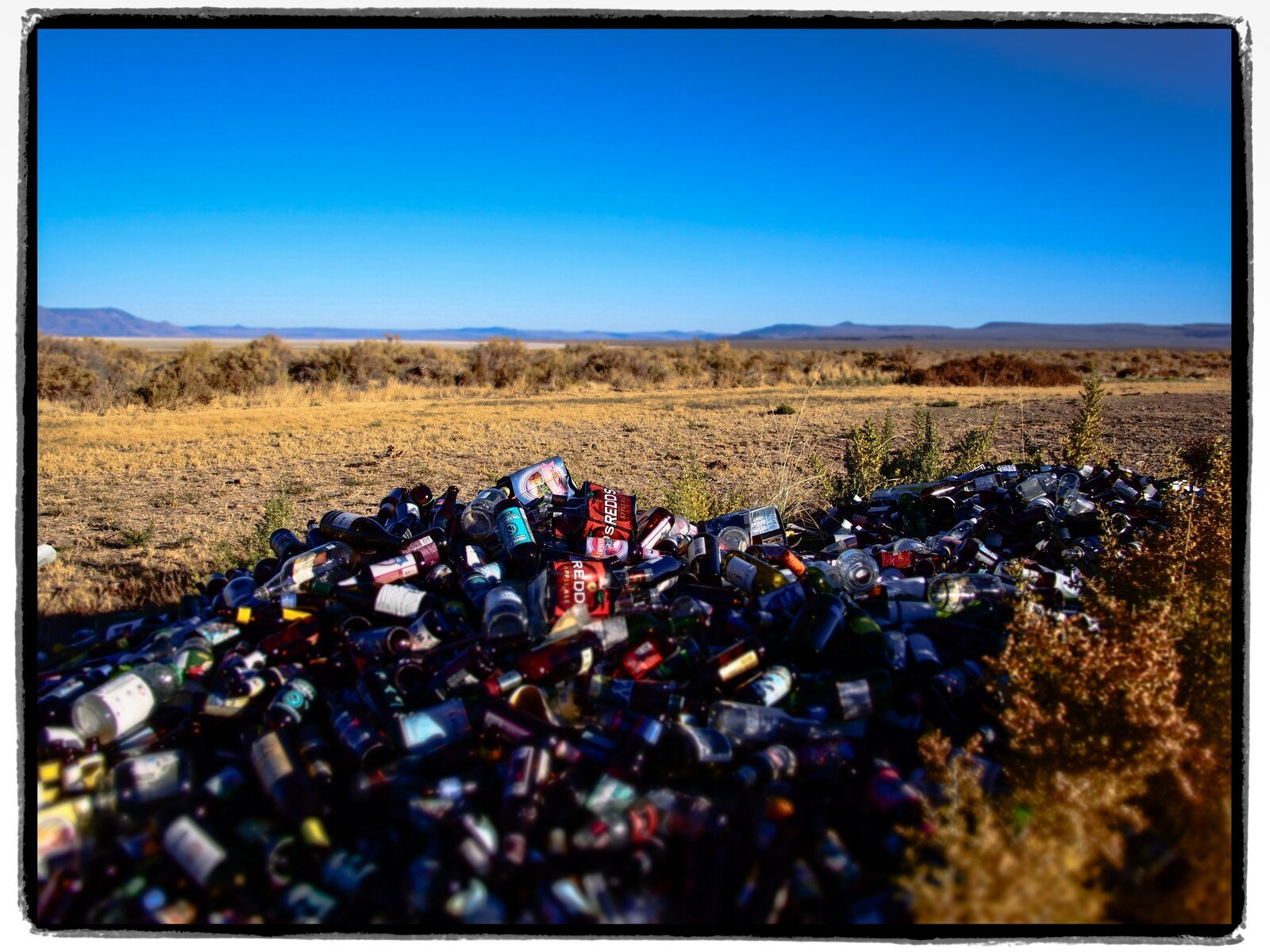 Bottles (Diorama).jpg