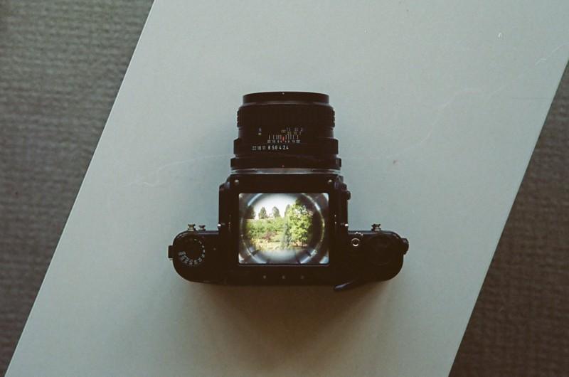 CanonPJupiter3portra160-27.jpg