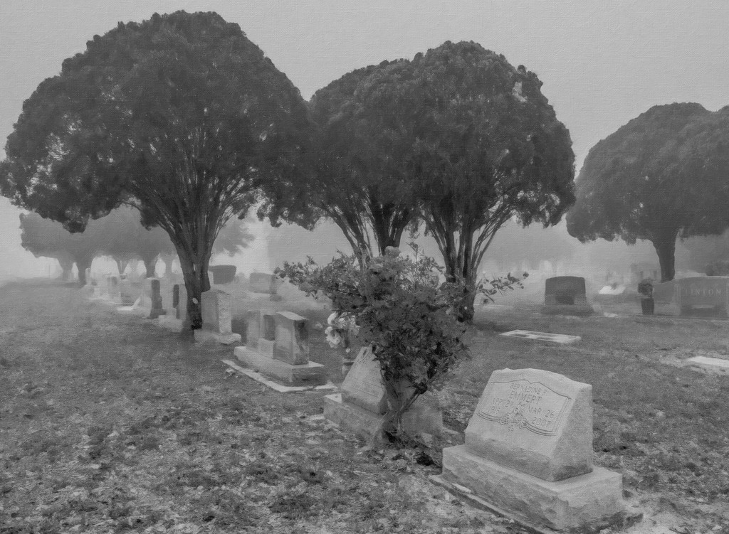 Cemetery%20fog-Snap%20Art-XL.jpg
