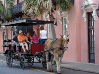 Charleston_Downtown08_s.jpg
