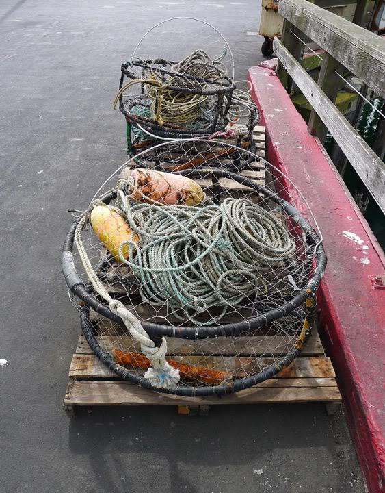 Crab-PotsWeb.jpg
