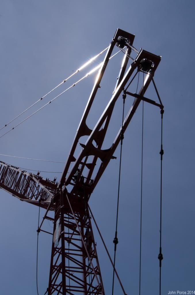Crane-1_zpsa02af6d7.jpg