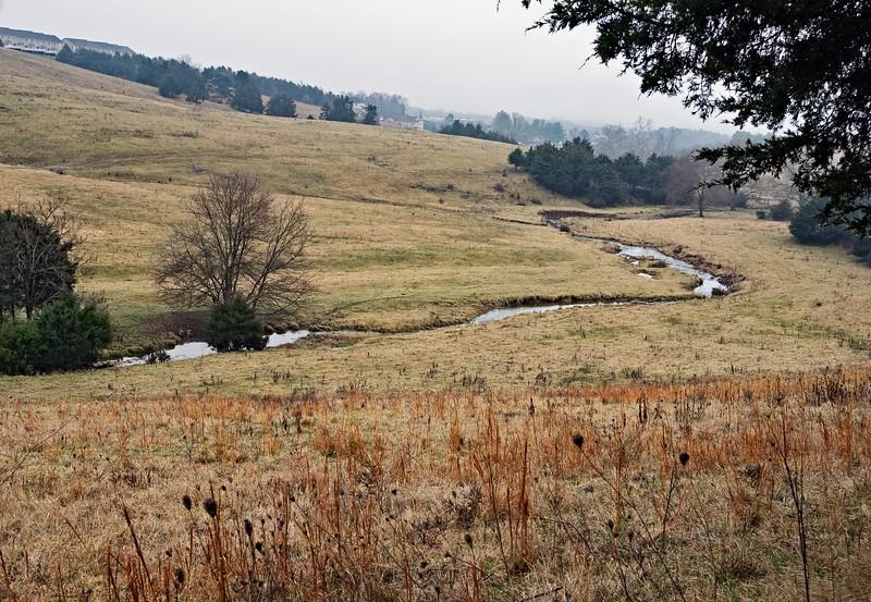 creek1-L.jpg