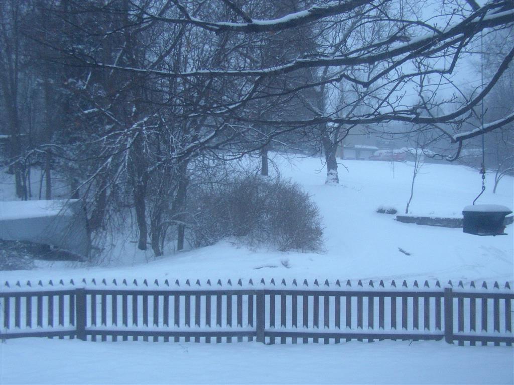 D550_snow_001_Medium_.JPG