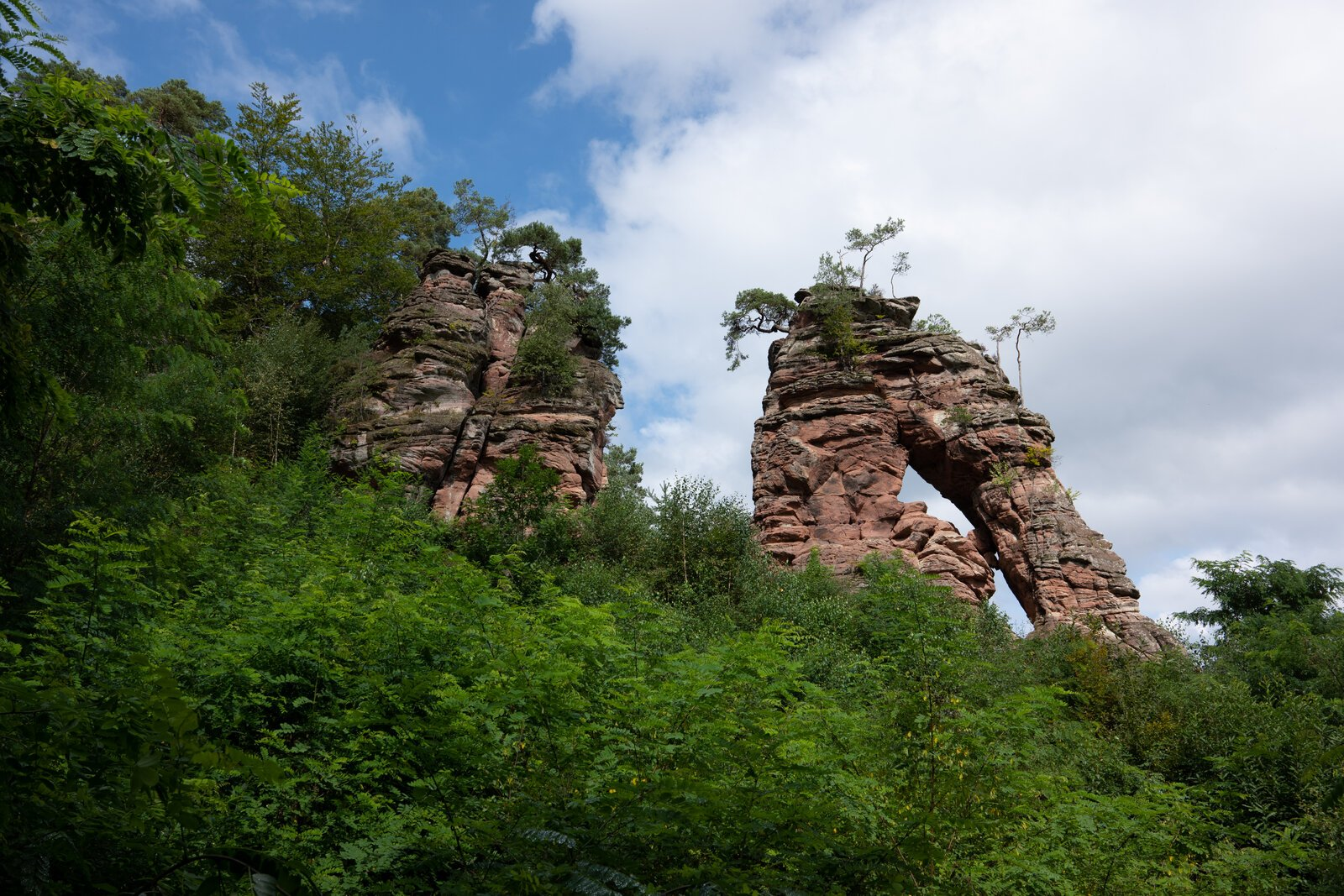 Dahner Felsenland4.jpg
