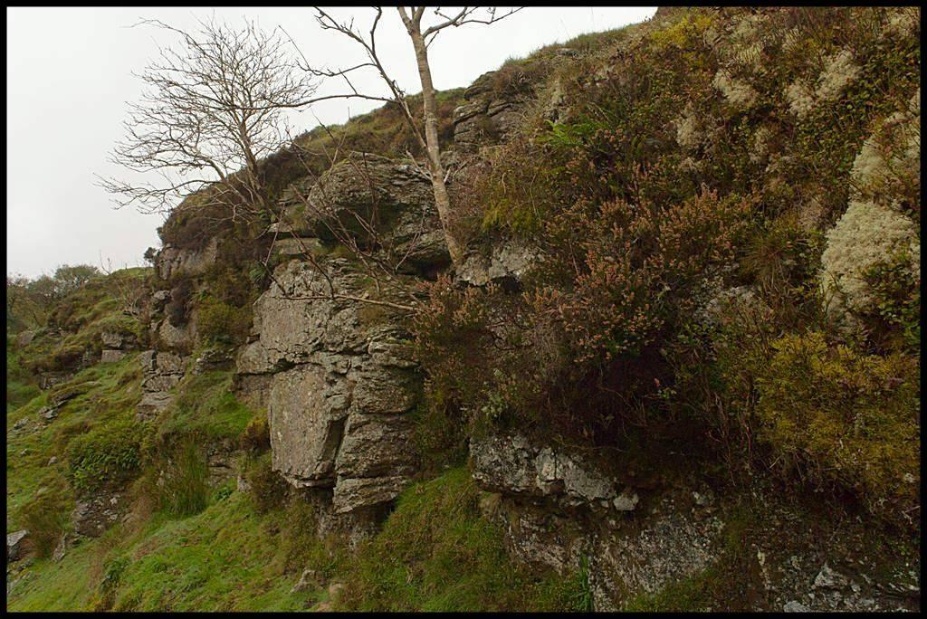 Dartmoor-300910-1000320.jpg