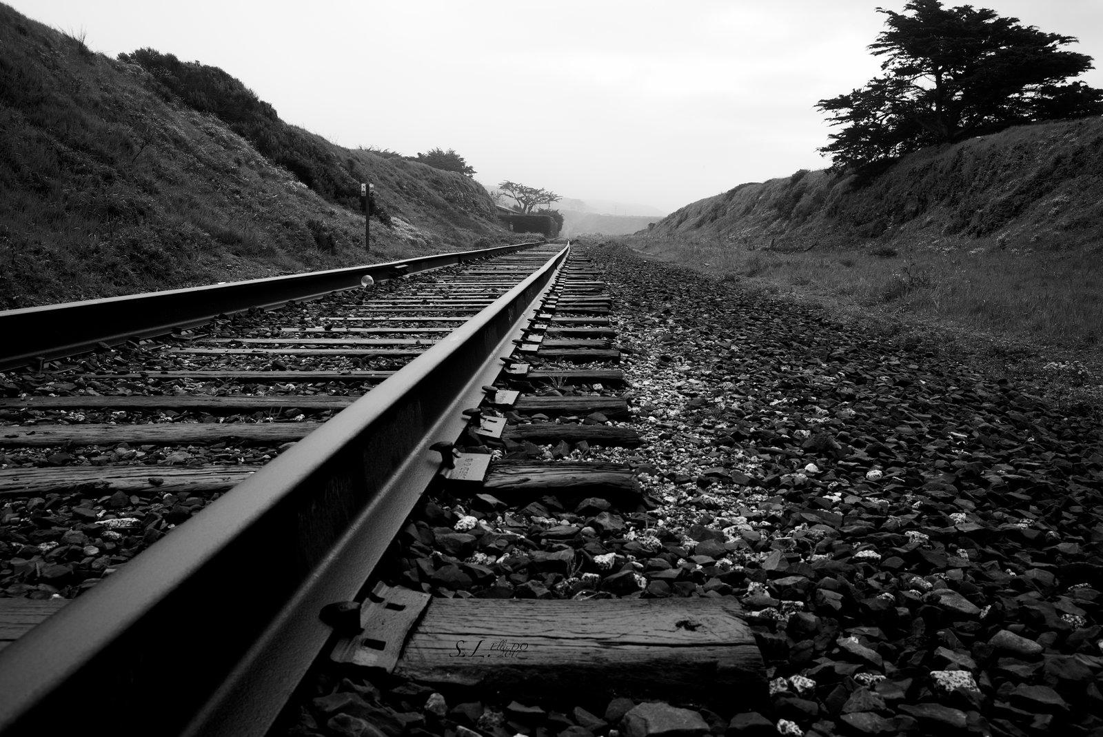Davenport Rails.jpg