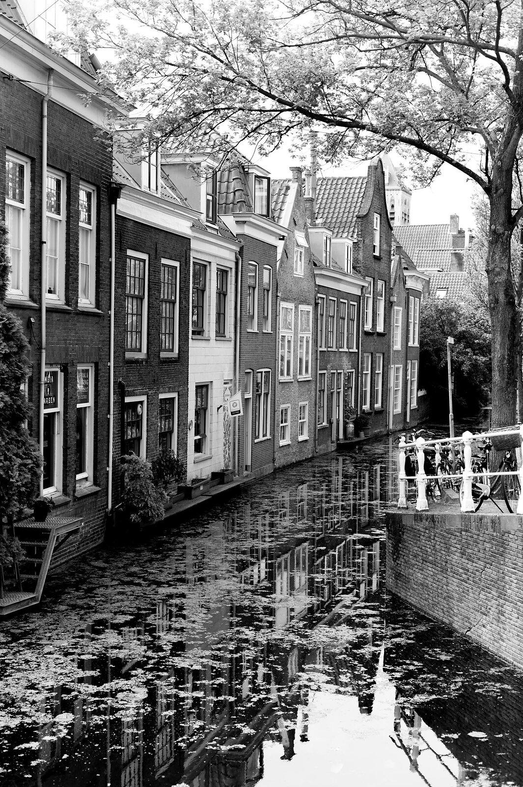 Delft L1366824.jpg