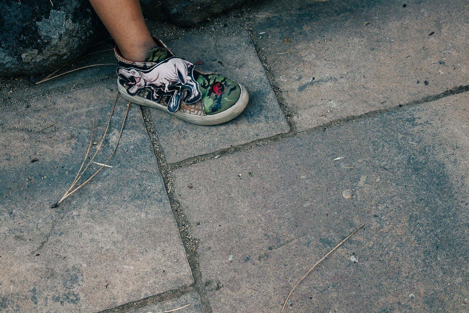 Dinosaur_Shoe.jpg