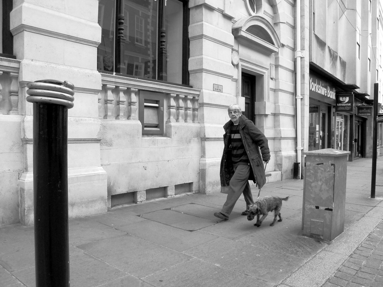 Dog-walking-at-any-time.jpg