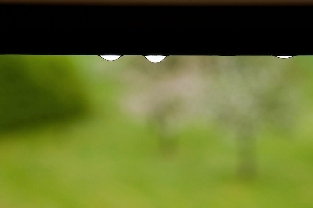 drops_1_von_1_.jpg
