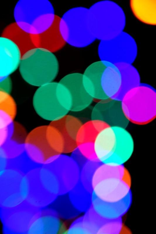 DSCF0019.web.jpg