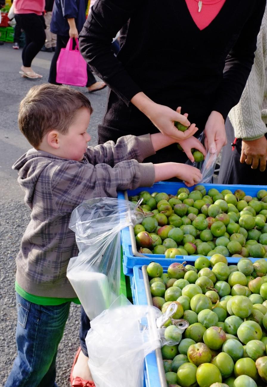 Dunedin Farmers Market (3 of 12).jpg