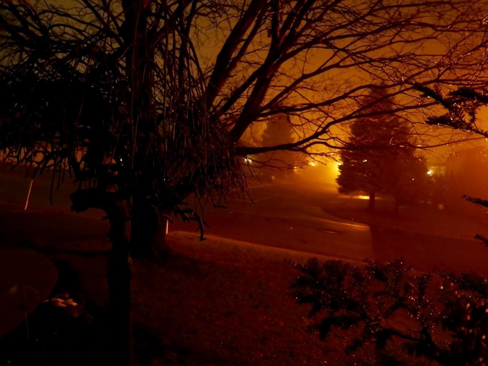 Early Morning Fog.jpg