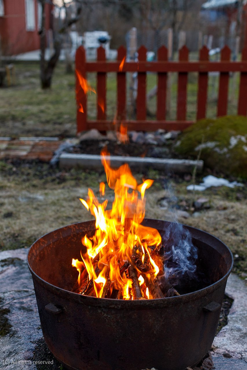 eastern_bonfire 4783 Canon EOS 5D Mark IV EF50mm f-1.2L USM.jpg
