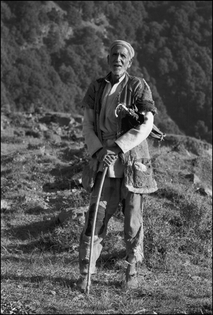 Elderly_herdsman-1jpg.jpg