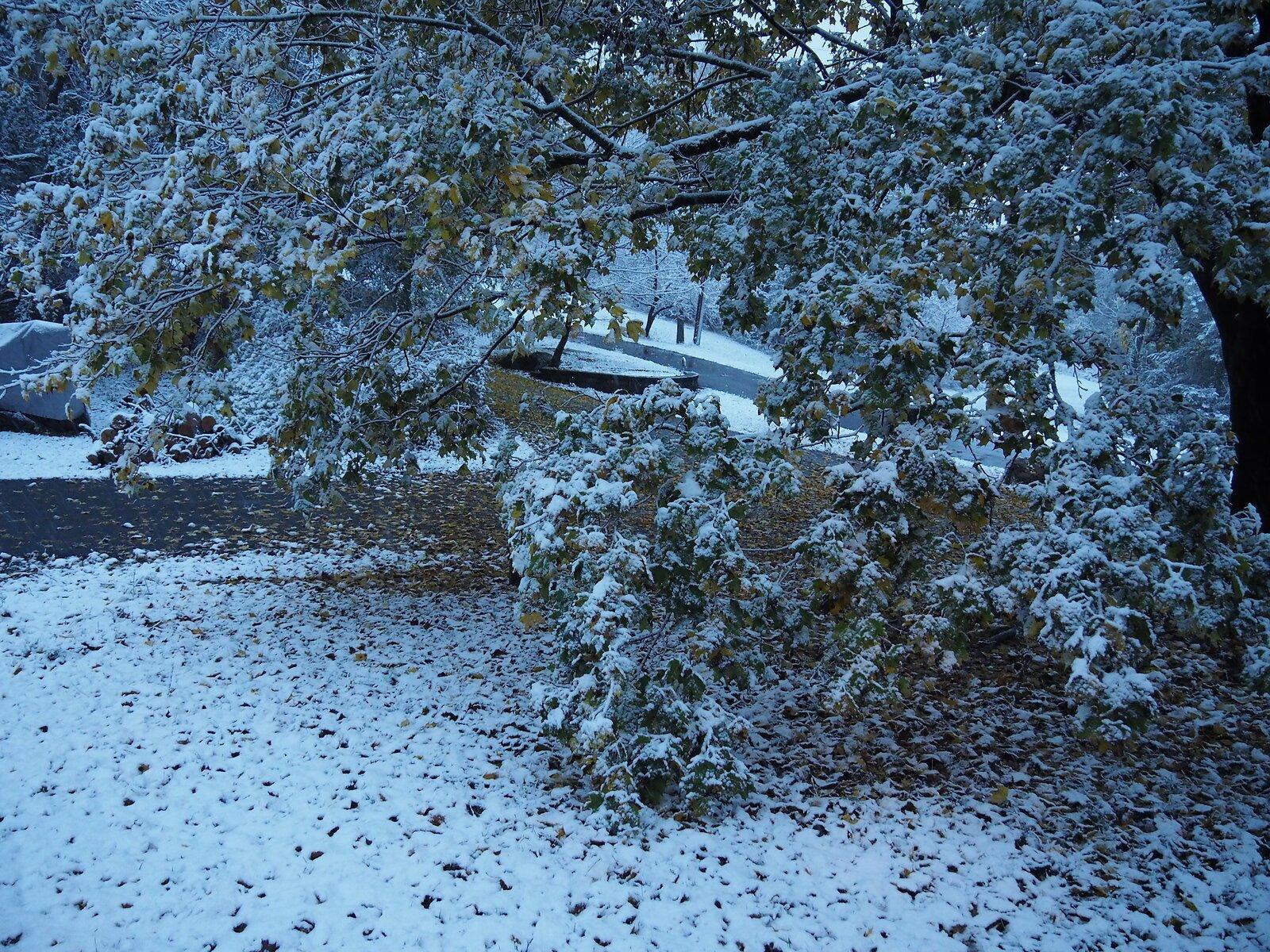 EM1 First snow 003.JPG