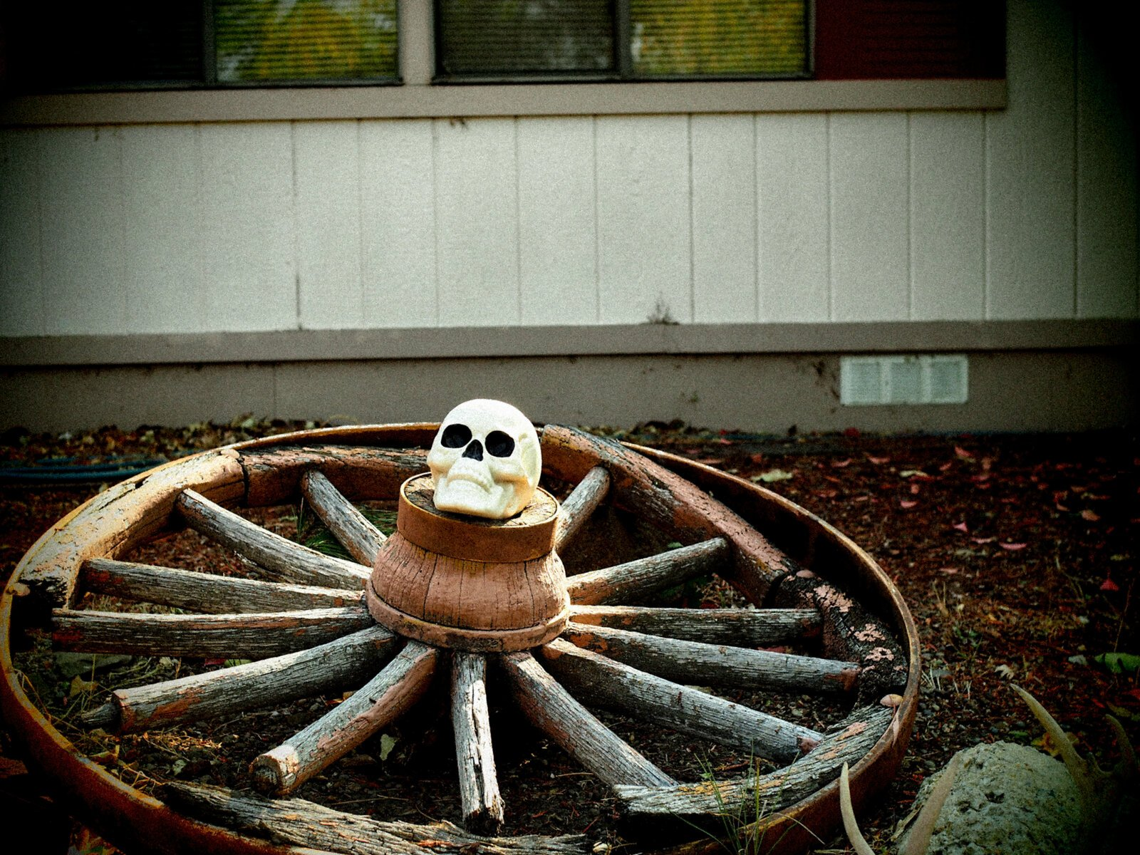 EP3_Oct2_Wagon_wheel_Skull(Pinhole).jpg