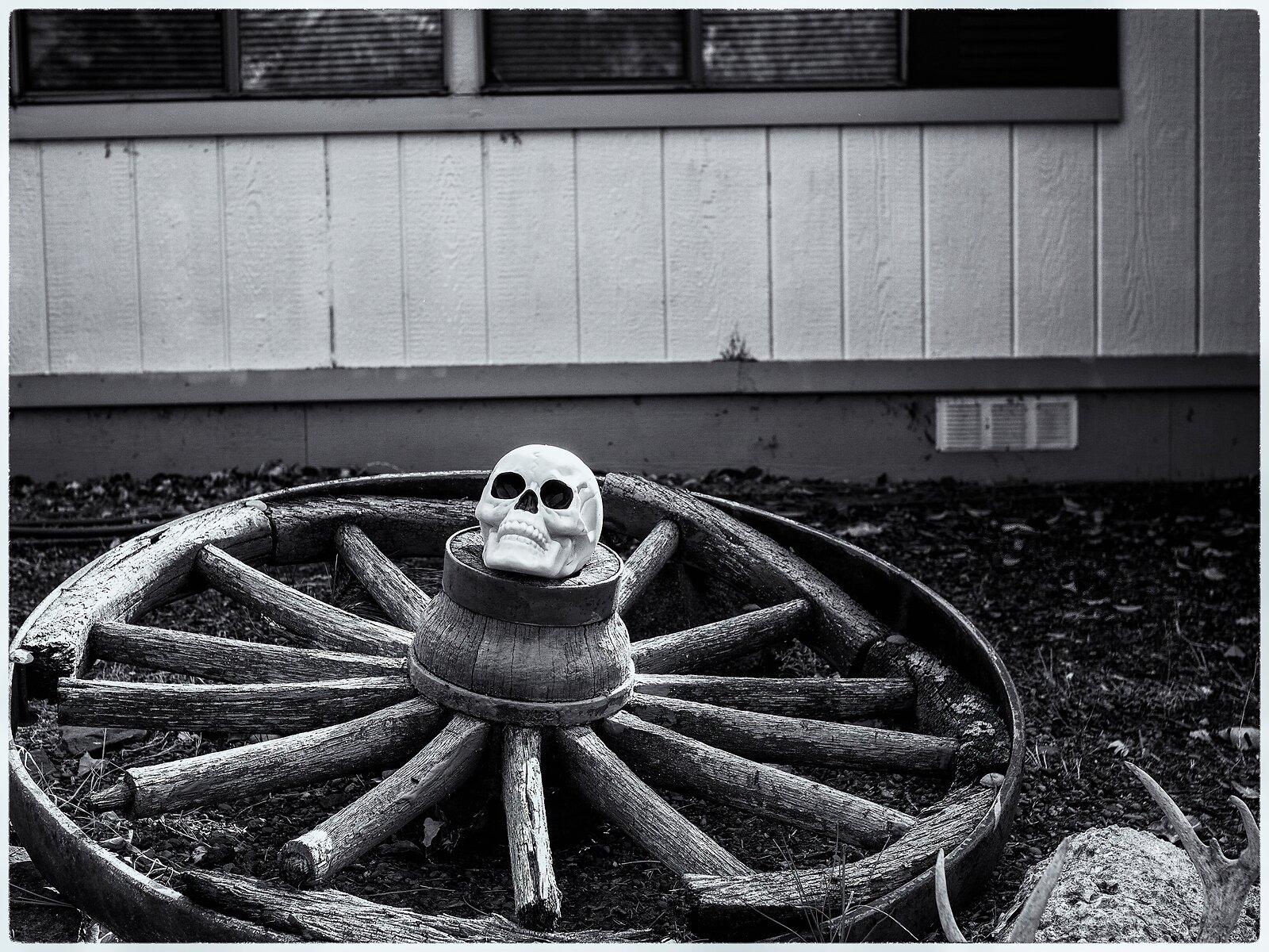 EP3_Oct2_Wagon_wheel_Skull(SilverEfex).jpg