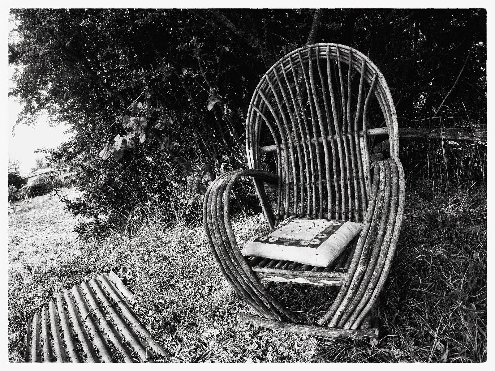 EP3_Oct8_Chair+Pyracantha.jpg