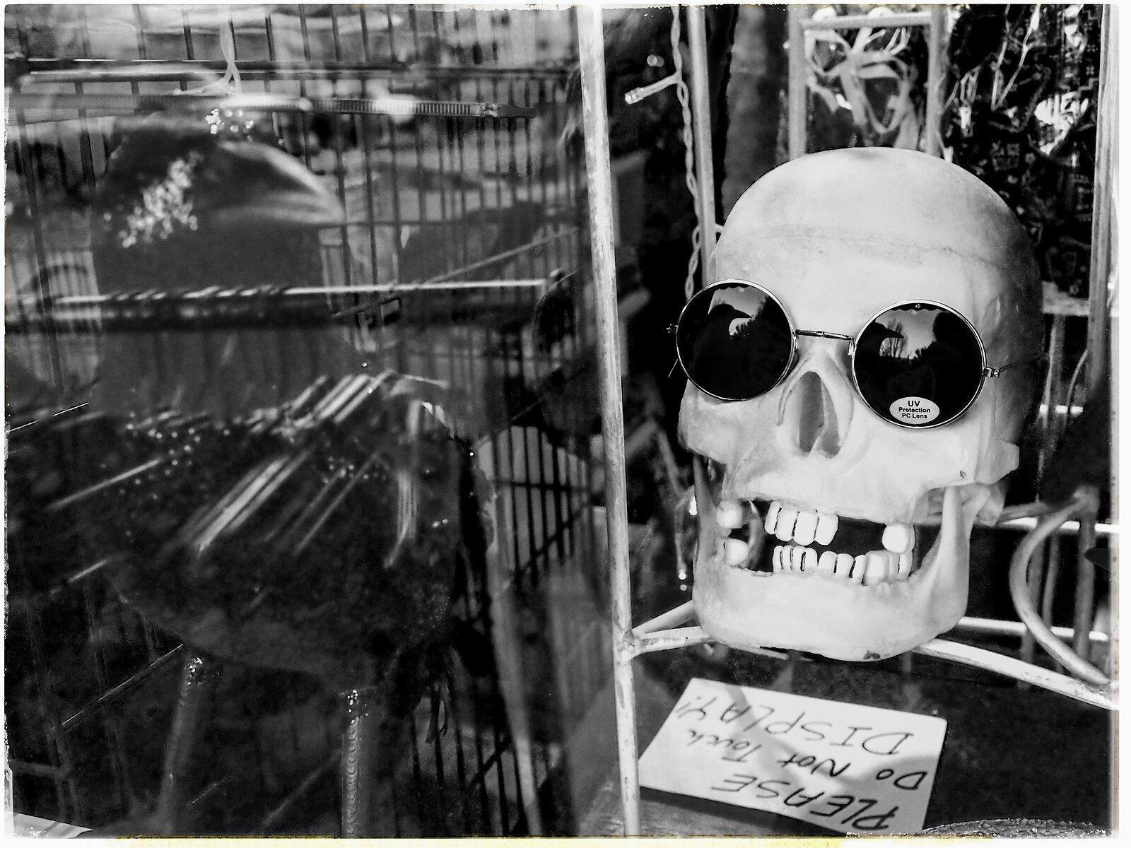 EP3_Skeleton_Shopwindow(AnalEfex).jpg