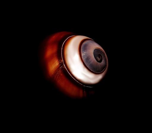 eyeintheskybritton-M.jpg