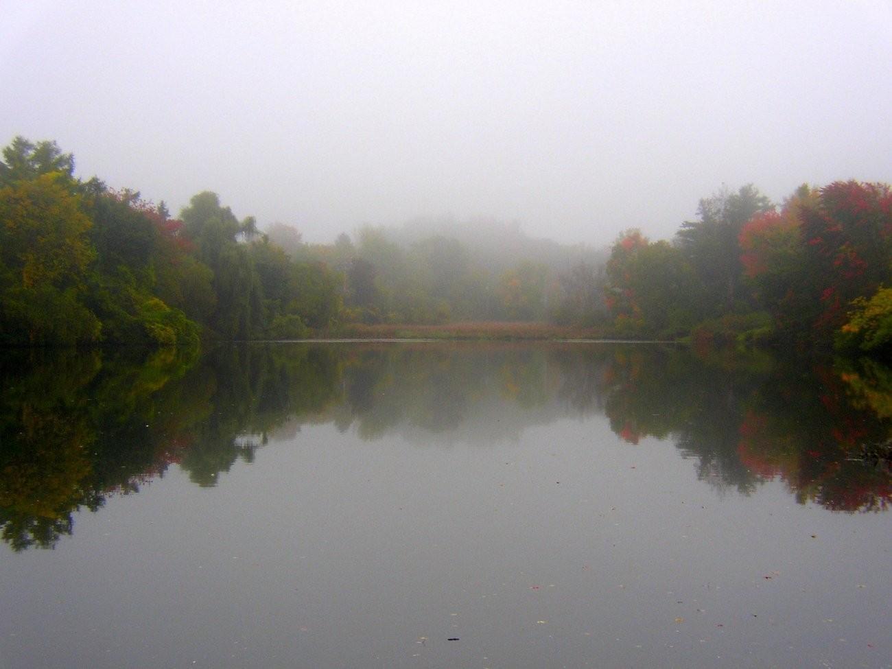 fall 2009 004-1.jpg