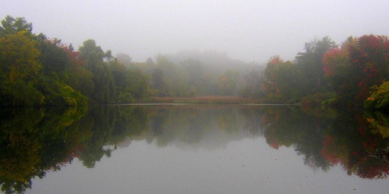 fall 2009 004-2.jpg