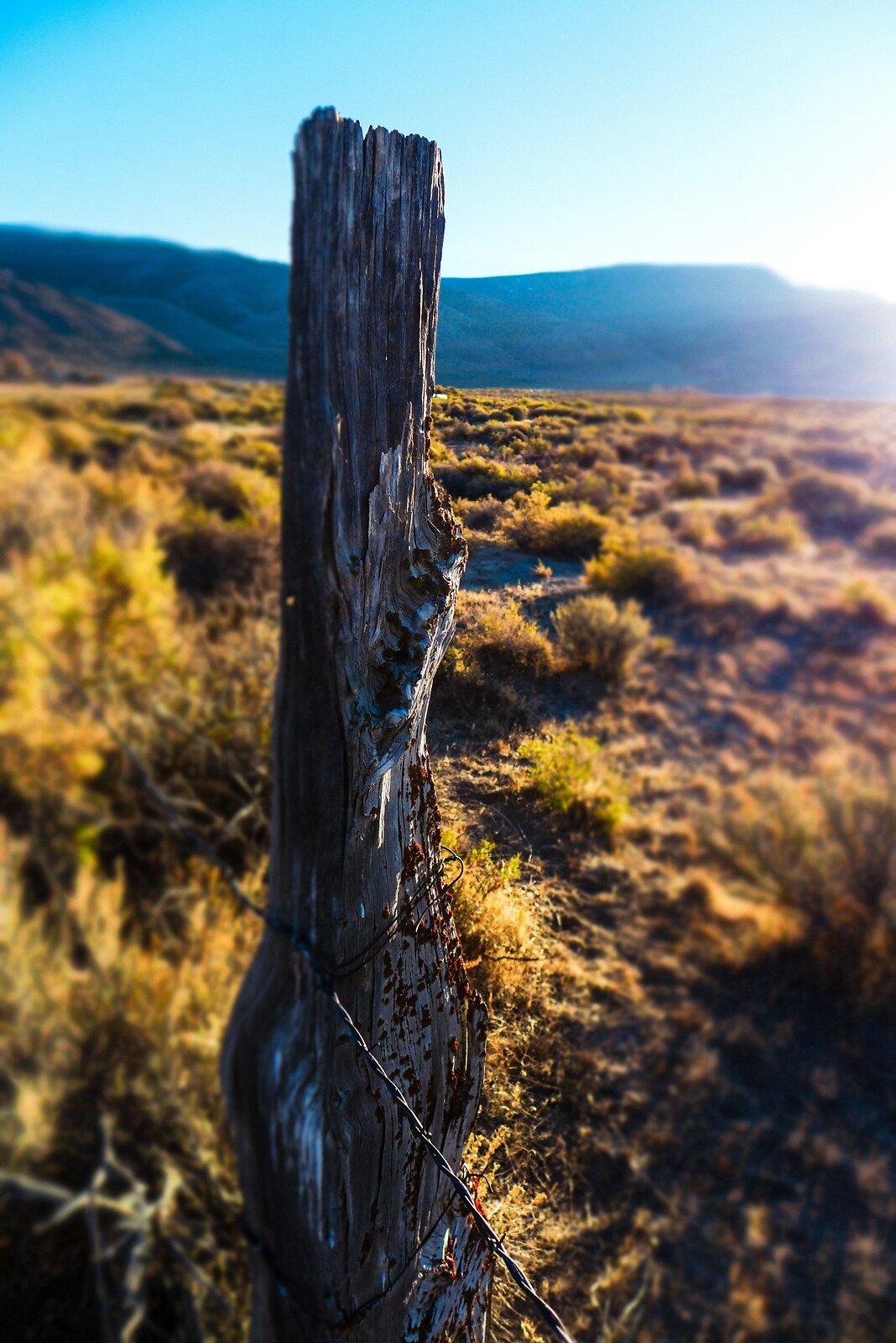 Fence Post (Porta).jpg
